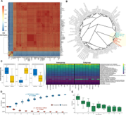 Complete Genomic Analysis of Enterococcus faecium Heat-Resistant Strain Developed by Two-Step Adaptation Laboratory Evolution Method썸네일
